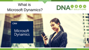 Microsoft Dynamics DNA IT